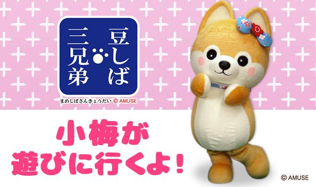 【終了しました】ファンタジープラザ江南店オープン記念に小梅が遊びに行きます!